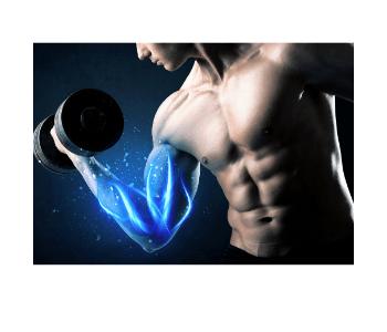 muscles detedtor działanie efekty skuteczność